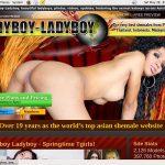 Ladyboy Ladyboy Vk